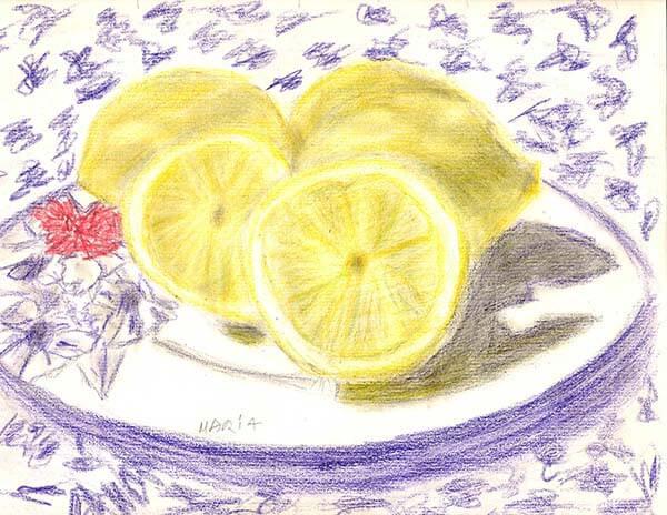 Lemon drawing by Maria Ferguson